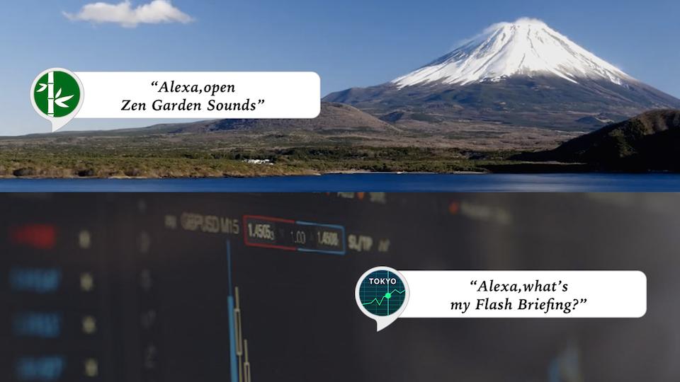 米国Amazonスキルストア向けに2つのAlexaスキルをリリース 〜企画から開発、マーケット運用までのトータルサポート体制構築を目指す〜